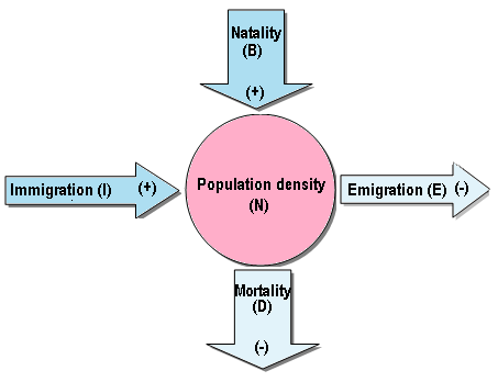 how population size can be affected by natality immigration mortality and emigration (natality + immigration)-(mortality+emigration) original population size ×100% open populations are affected by natality, mortality, immigration & emigration.